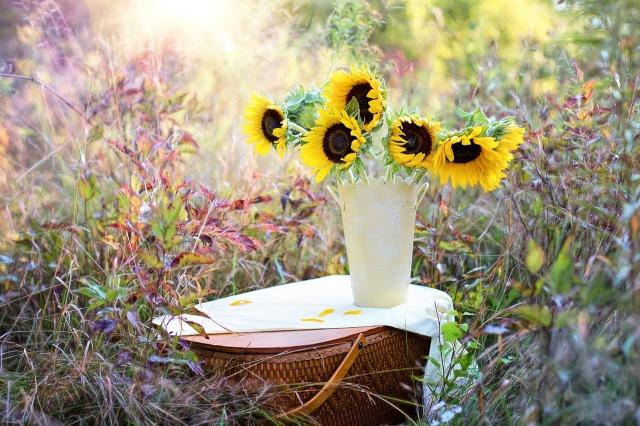 sunflowers-1719119_1280